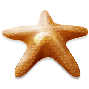 Make_a_Difference_Starfish